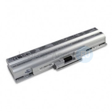 Accu Sony Vaio VGP-BPS13 / Zilver